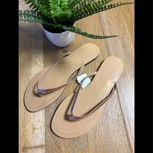 Banana Republic flip flops bronze metallic 8